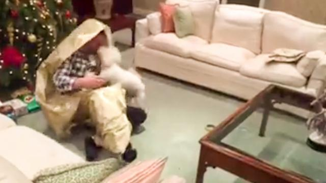 This Dog Got The Best Christmas Present Ever