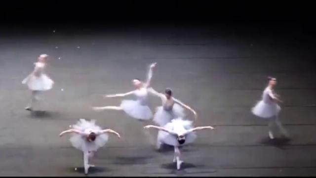 Un ballet tan bello como gracioso ha causado furor en Internet