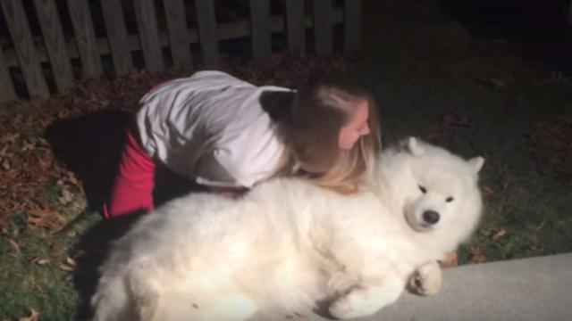 Dog Refuses To Go Inside Internet In Hysterics Upon Seeing Daughters Plan Fail Miserably