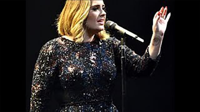 Adele Noticed Something Strange Happening In Crowd, So She Stopped