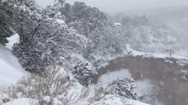John Sirlin trên Twitter Heavy snow falling at the South Rim