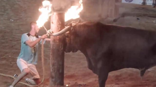 Bull tormented by crowds and horns set on fire before being knifed