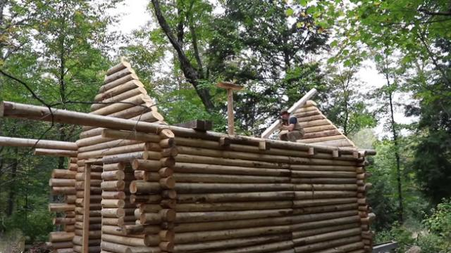 Watch this man build a log cabin from scratch