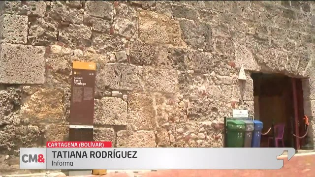 'Bacterias amenazan estabilidad de las murallas'
