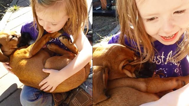 Girl's Sweet Lullaby To Newly-Adopted Rescue Dog Has Already Melted 23 Million Hearts
