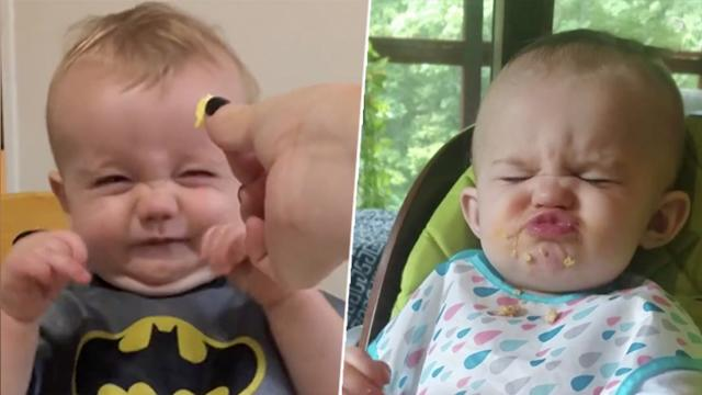 These babies try new food for the first time—their