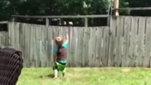 Little boy and dog play catch over fence_Medium