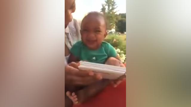Baby's Hysterical Giggling Over Animal Book Will Melt The Hardest Heart.