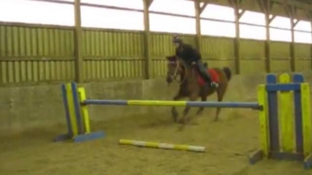 Equestrian Horse Refuses To Jump Bars, Throws Teen Over Them Instead