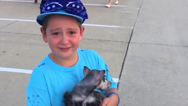 Little Boy's Reaction To Getting A Puppy