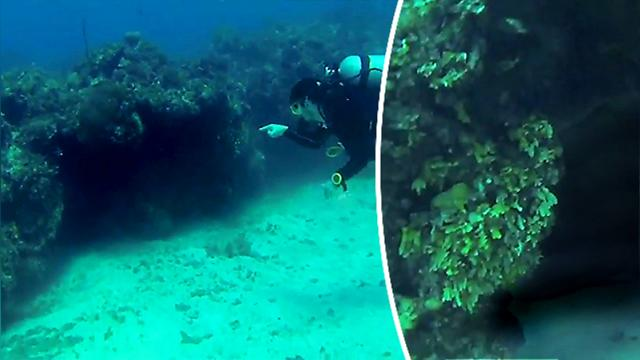 Divers explore a dark underwater cave—inside they encounter