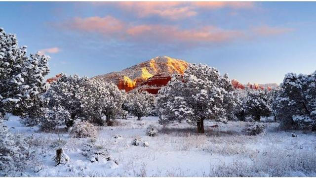 Good morning LIVE from snowy Tombstone! - Tombstone Arizona