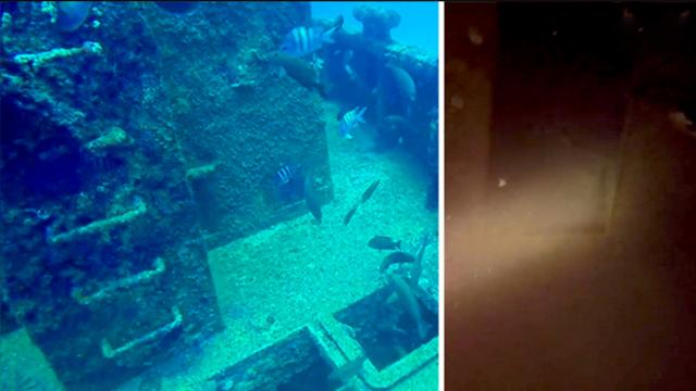 Tourists explore the bowels of sunken shipwreck—but what's lurking