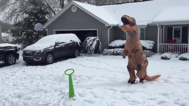 Watch Out Shaun White! This Snowboarding T-Rex Shreds Like A