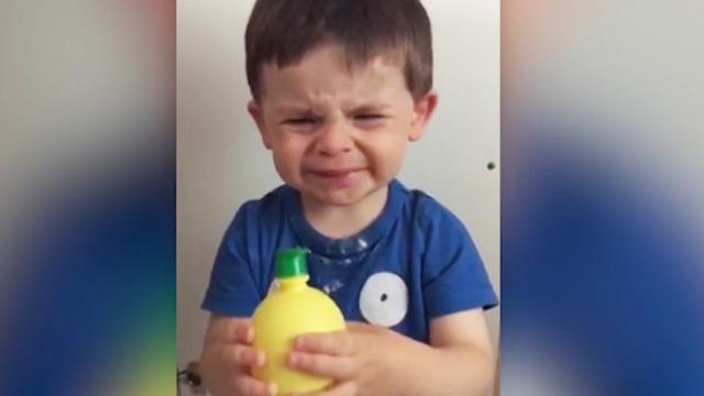 Unsuspecting tot reacts hilariously to bitter sip of lemon juice