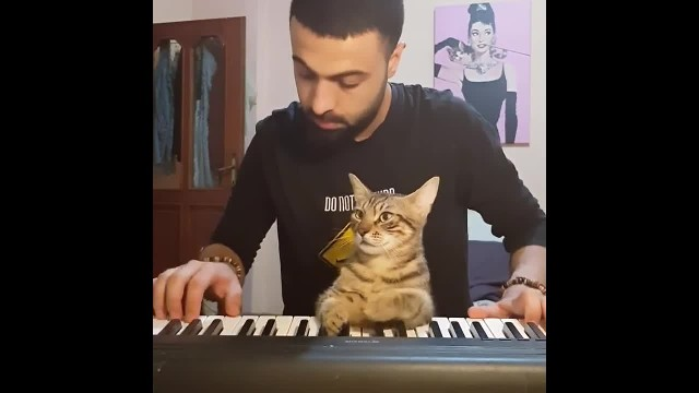 Sarper Duman loves his cat