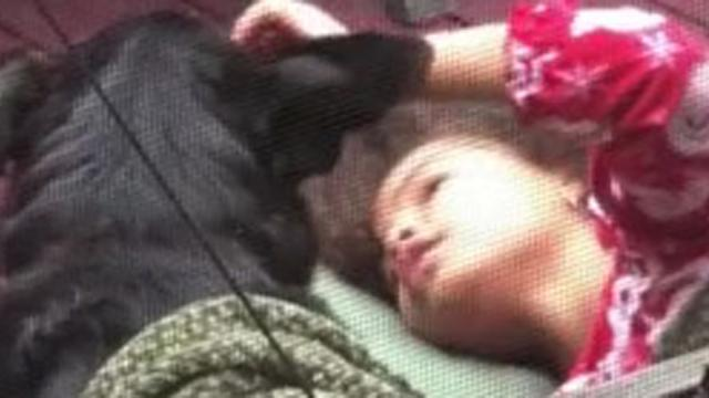 Too cute! Little girl sings sweetly to family dog_Large