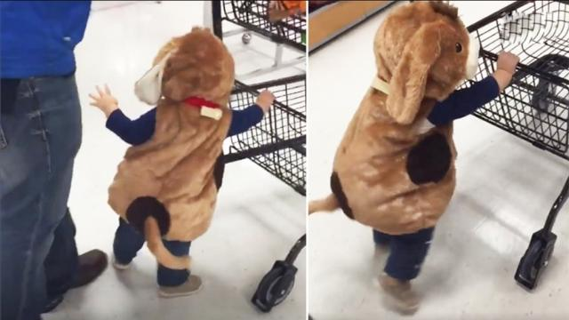 Kids go grocery shopping But when these little bosses take