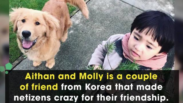 Special friendship of the boy and his puppy makes netizens crazy