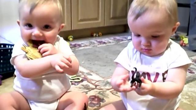 Twins mimic Daddy's Sneeze _ Sneezing Twins