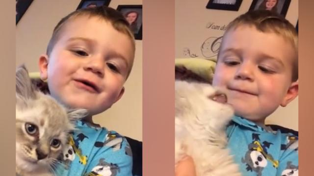 Tiny Toddler And Baby Kitten Have Entire Conversation In