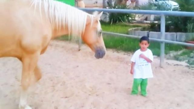 Horse walks up to boy with rare disorder as mom films their surprising interaction