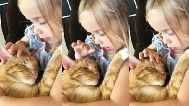 Little Girl Sings Lullaby to Sleepy Kitty