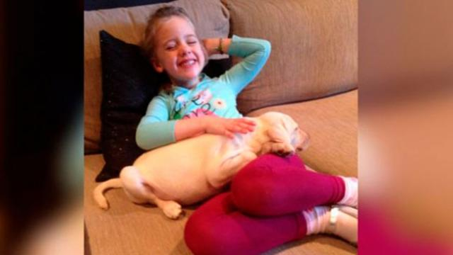 Little Girl Gets The Best Surprise When Thieves Unexpectedly Return Her Stolen Puppy