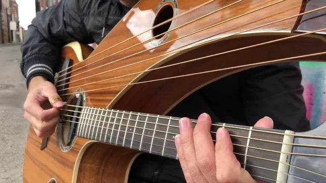 Seven Nation Army on a Harp Guitar - Jamie Dupuis