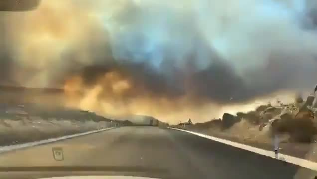 Ensenada, registra la mayor afectación por los incendios forestales registrados en Baja California
