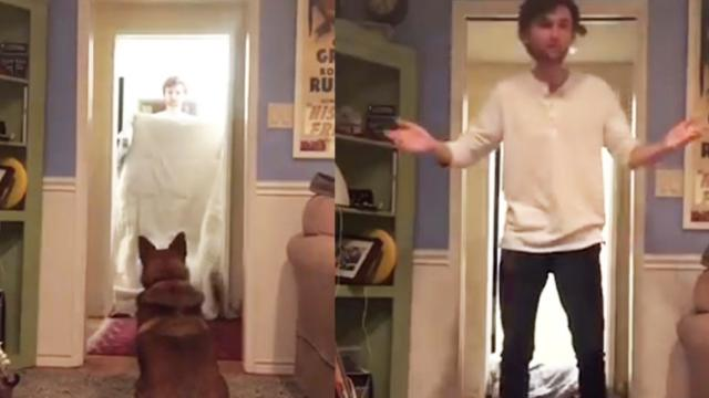 Man and dog bond over magic trick
