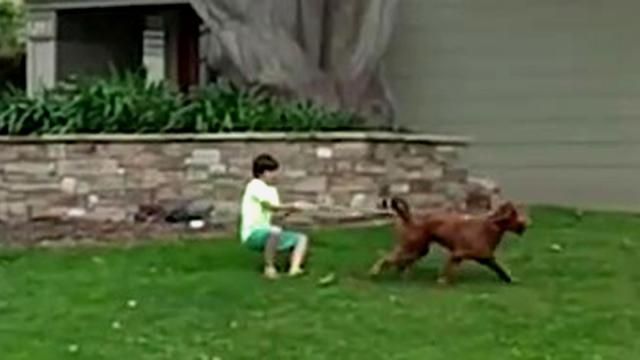 No doubt about it, that boy is being walked by the dog.