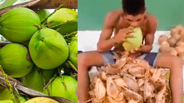 Man Peels A Whole Coconut Using Only His Teeth!