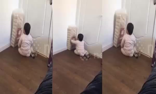 Cute toddler fights pack of toilet rolls