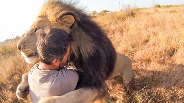 GoPro- Lions - The New Endangered Species-