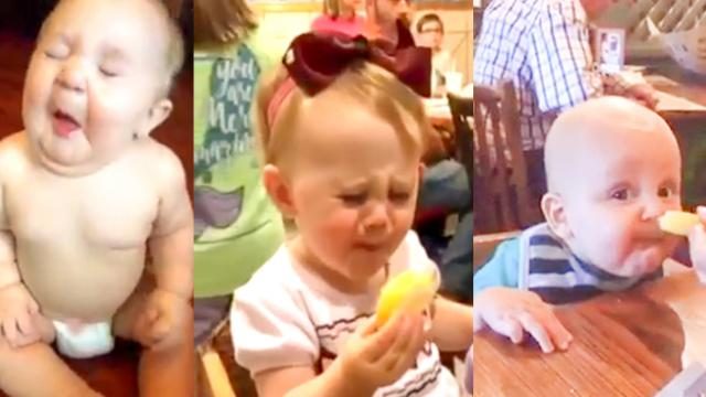 Best Reactions Of Babies Eating Lemons For The First Time! - Readers Portal