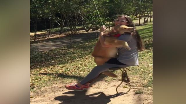 Nothing like a good swing with your best dog