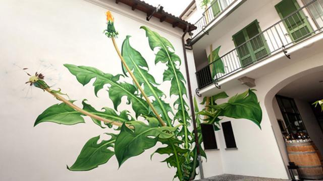 San Francisco Artist Paints Weed Murals That Slowly Take Over The City