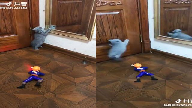 """Cat """"runs for her life"""" after being chased by a moving toy soldier"""