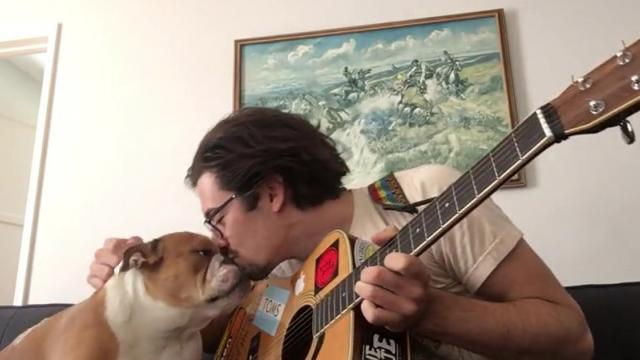 This Precious Bulldog Loves To Show Off His Singing Skills