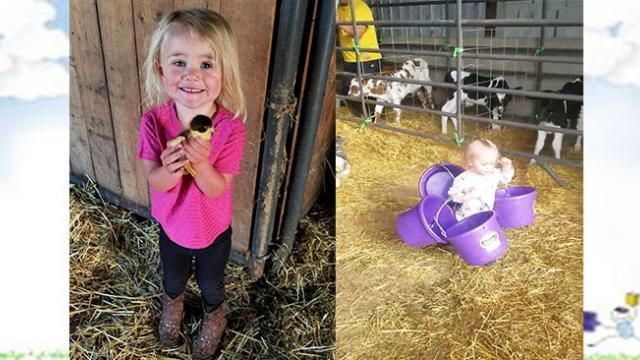 Adorable 21-month-old Little Farm Girl Helps Her Mom with Determination