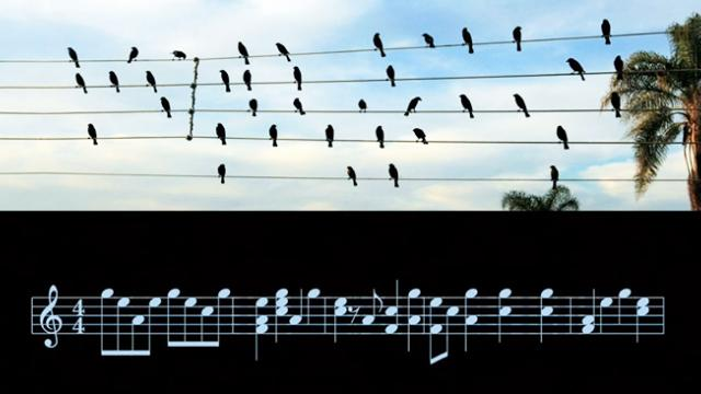 Do You See Music? Jabras Agnelli Sees It in the Most Normal of Places, and It Sounds Great.