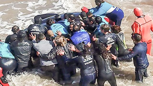 Amazing Moment Stranded Killer Whale Is Returned To Ocean